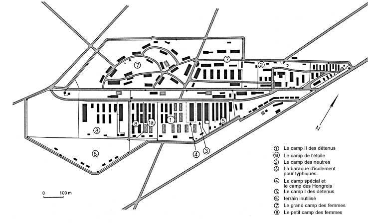 Plan du camp de Bergen-Belsen