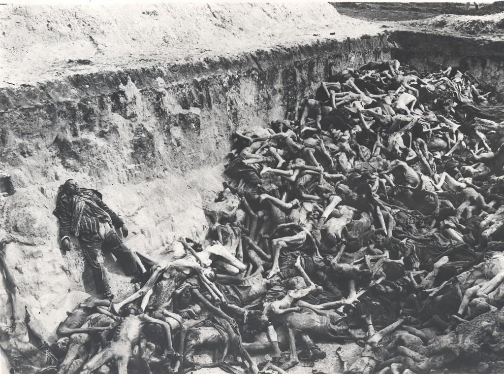 Photographie d'archive Bergen-Belsen 7