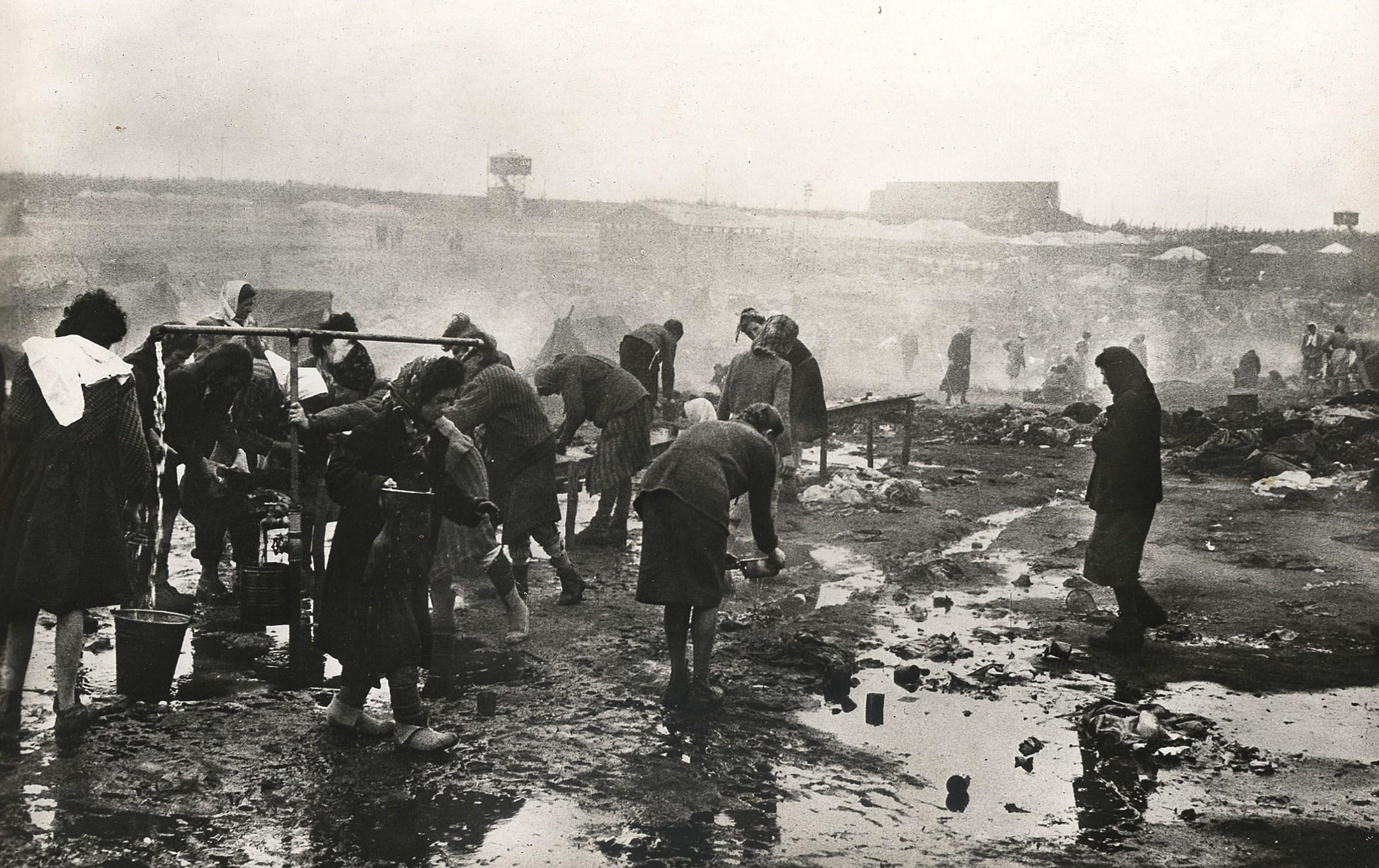 Photographie d'archive Bergen-Belsen 1