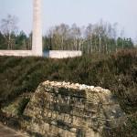 Ancien site Bergen-Belsen photographie 2