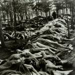 Photographie d'archive Bergen-Belsen 6